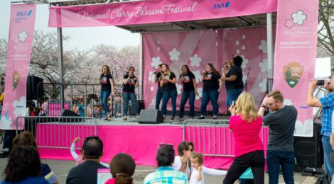 Free National Cherry Blossom Festival Events