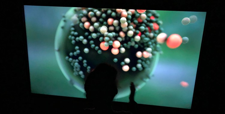 Get Interactive with New Nature at the ARTECHOUSE