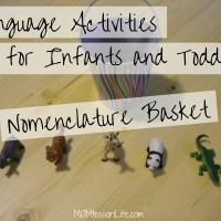 Language Activities for Infants and Toddlers - Nomenclature Basket