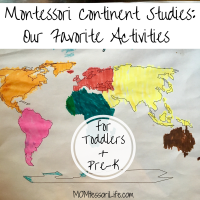 Montessori Continent Studies:  Our Favorite Activities for Toddlers and Preschoolers