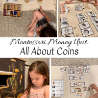Montessori Money Unit:  All About Coins