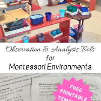 Observation & Analysis Tools for Montessori Environments
