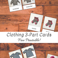 Clothing 3-Part Cards -- Free Printable!