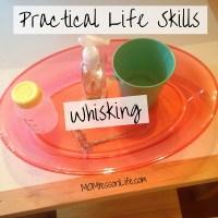 Practical Life Skills - Whisking