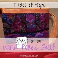 What's On Our World Peace Shelf -- Trades of Hope
