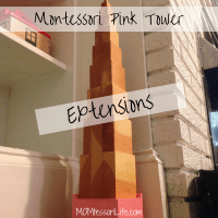 Montessori Pink Tower Extensions