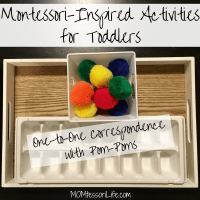Montessori-Inspired Activities for Toddlers -- One-to-One Correspondence with Pom-Poms