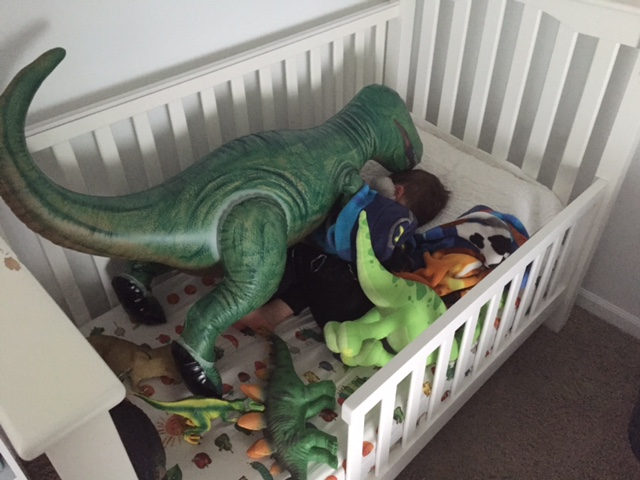 You know who else comes pitter-pattering into our room every morning? A family of dinosaurs that Joey sleeps with every night!