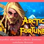 Игровой автомат «Arctic Fortune» – победить викинга