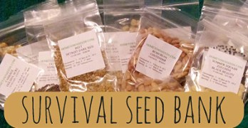 The Importance of a Survival Seed Bank