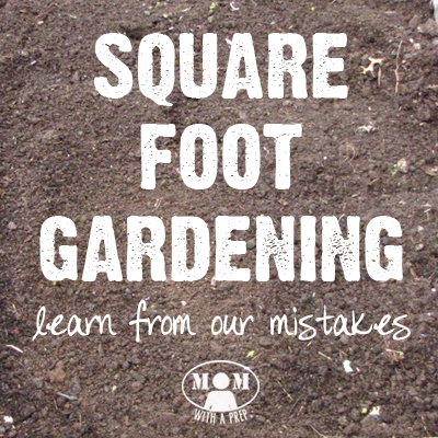 Square Foot Gardening Mistakes - Learn from Ours First!