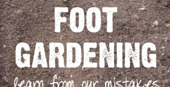 Square Foot Gardening Mistakes – Learn from Ours First!