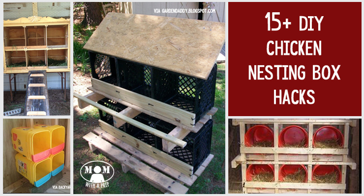 15+ Chicken Nesting Box Hacks