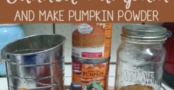 How to Dehydrate Canned Pumpkin Puree and make Pumpkin Powder
