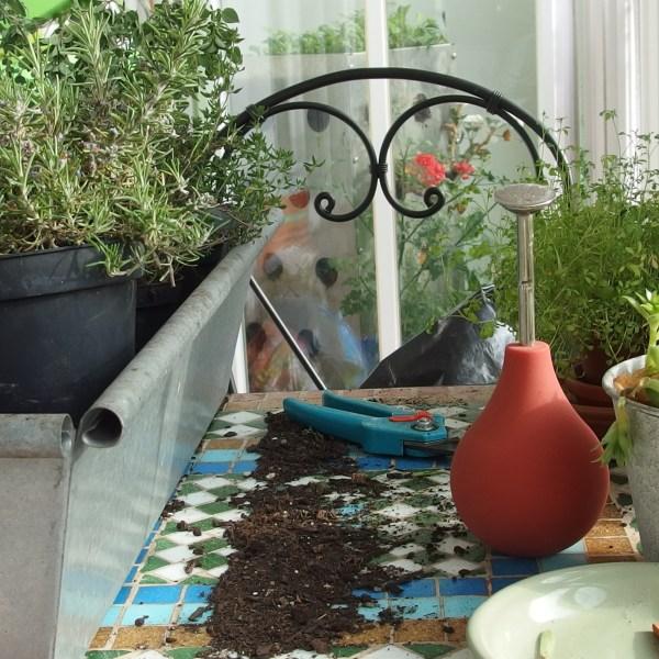 8 bonnes raisons de cultiver son balcon