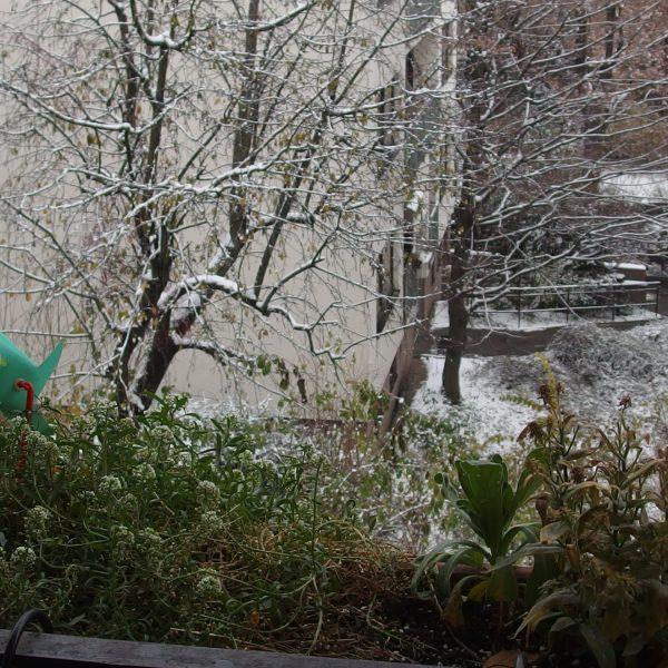 Un balcon utile en hiver : 3 idées écologiques