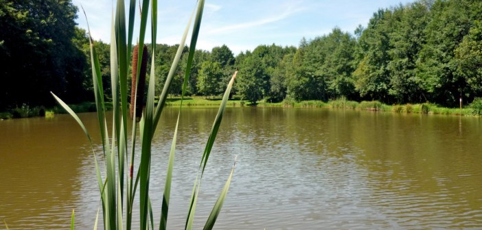 Sundgau Alsace Au fil de l'eau