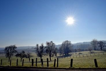 Dannemarie Sundgau Alsace