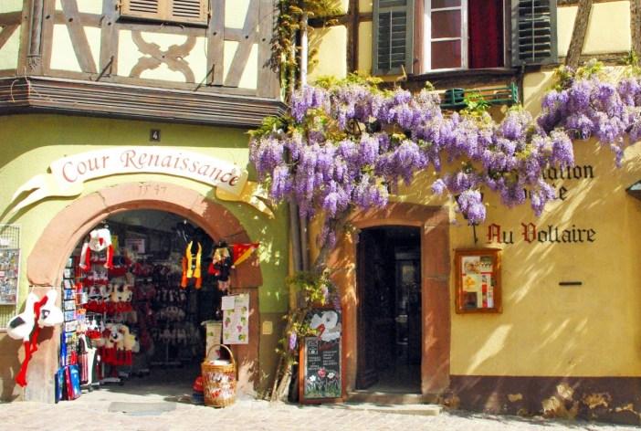 Photos de printemps en Alsace : Riquewihr © French Moments