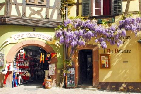 Riquewihr printemps Alsace