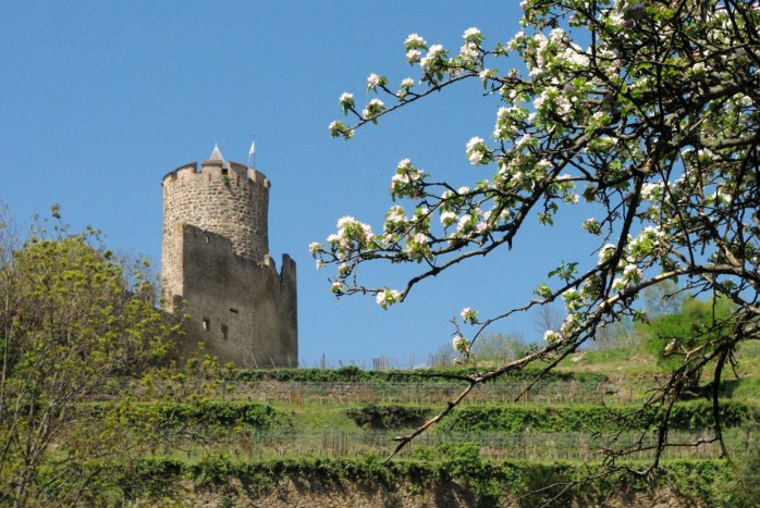 Photos de printemps en Alsace : Kaysersberg © French Moments
