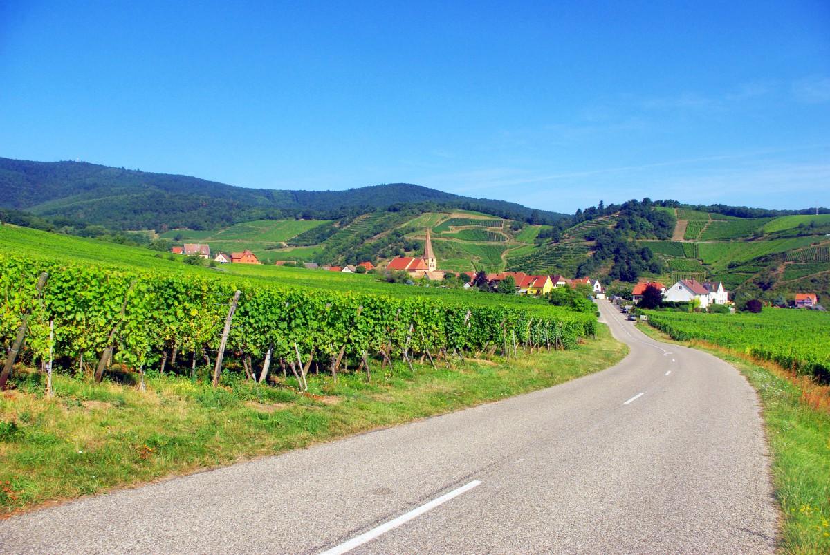 15 km autour de Colmar Niedermorschwihr Haut-Rhin Alsace