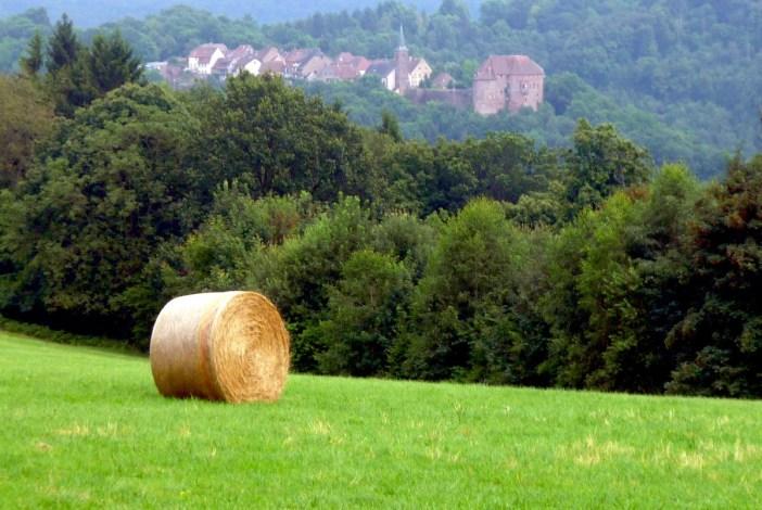 Châteaux-forts d'Alsace La Petite Pierre