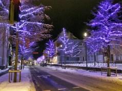 Illuminations de Noël à Sélestat © Selestadium Novum