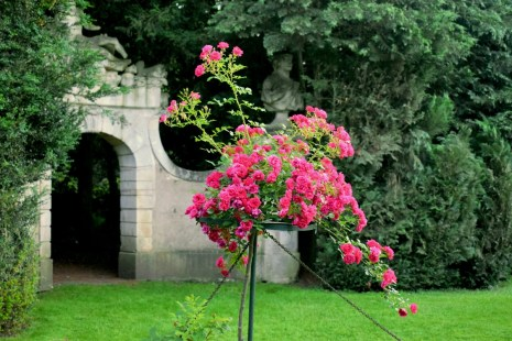 La roseraie du Parc de la Pépinière © French Moments