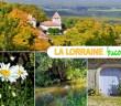 Découvrez la Lorraine bucolique et champêtre ! © French Moments