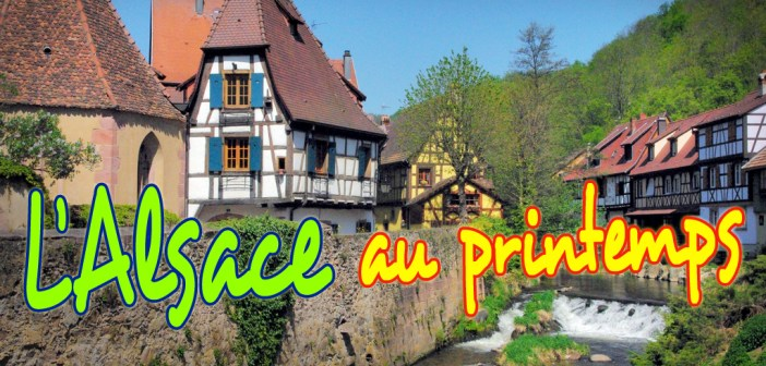 L'Alsace au printemps (Kaysersberg) © French Moments