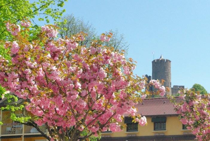L'Alsace au printemps (Kaysersberg) © French Moments