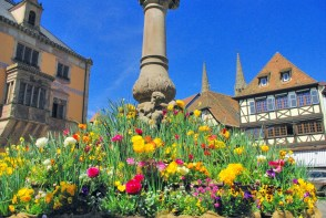 Obernai au printemps © French Moments