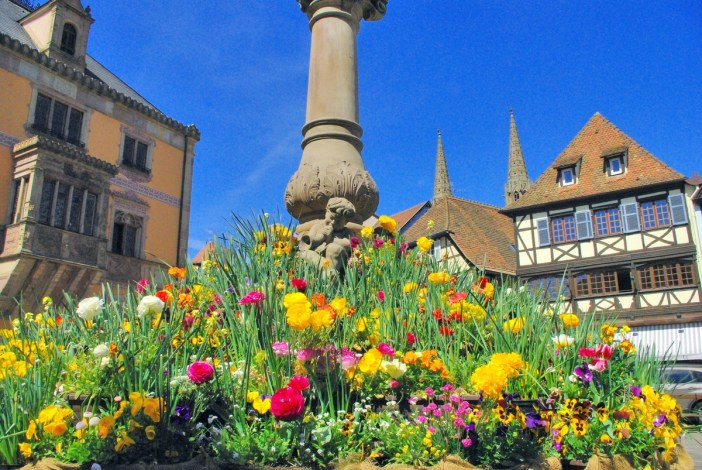Photos de printemps en Alsace : Obernai © French Moments