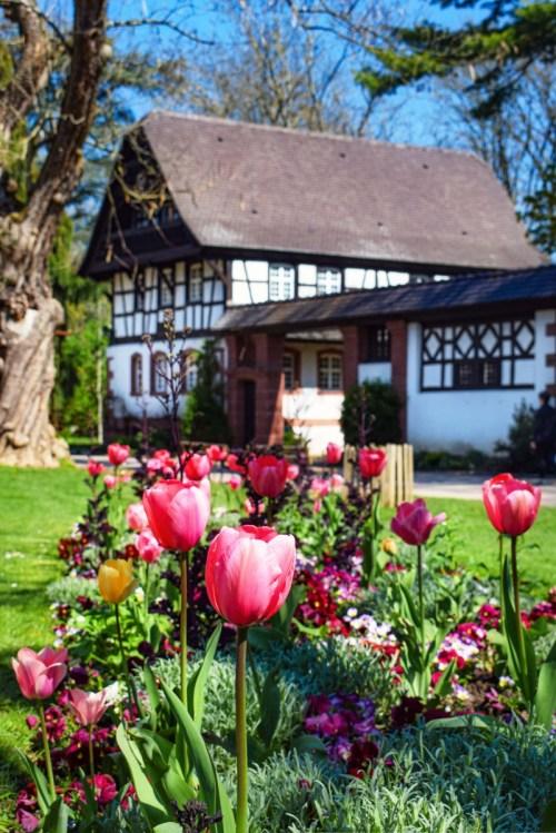 Photos de printemps en Lorraine - Nancy © French Moments