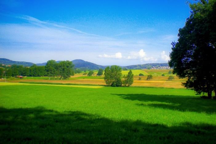 Autour de Strasbourg - Le Pays de Hanau dans les environs de Mulhausen © French Moments