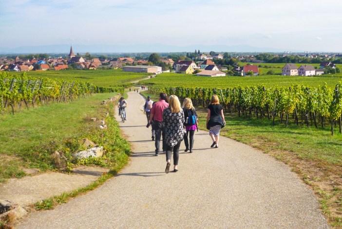 Les plus belles pistes cyclables d'Alsace - ici en Kientzheim et Kaysersberg © French Moments