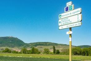 Les plus belles pistes cyclables d'Alsace - ici près de Roschwihr © French Moments
