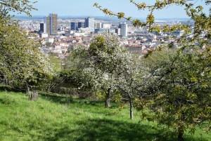 Le point de vue de la Cure d'Air sur Nancy © French Moments