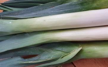 Poireau, légumes d'hiver