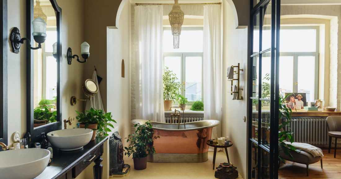 10 plantes de salle de bain