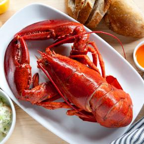Tutoriel : comment manger du homard