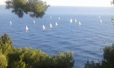 salvaguardia dell'oceano: una priorità per Monaco