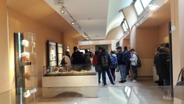 Il nuovo allestimento del Museo Preistorico dei Balzi Rossi (Ventimiglia)