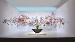 Al Café de Paris di Monte Carlo protagonista l'Ikebana