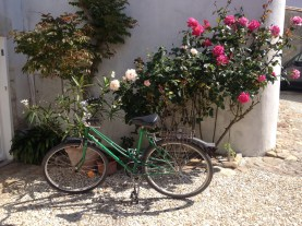An old bicycle by the rosary @CelinaLafuenteDeLavotha