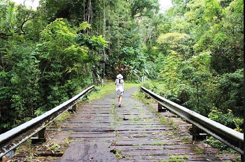 Nahiku Road to Hana