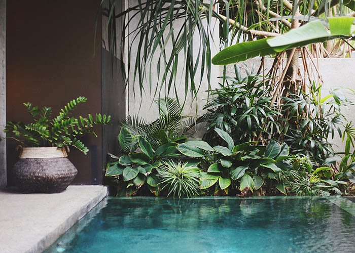 Bali villa.jpg