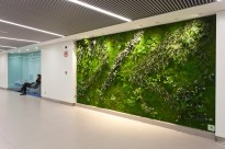 """Eucaliptus"" - Four Vertical Gardens - GMP Group - Madrid"