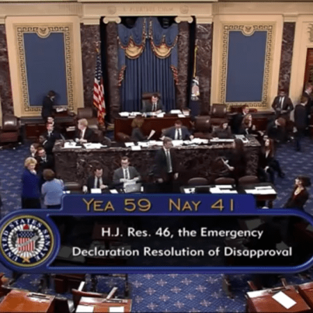 Senate Votes to Block President Trump's Emergency Declaration